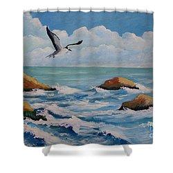 Oiseau Solitaire Shower Curtain