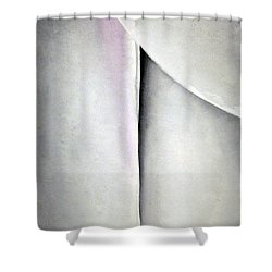 O'keeffe's Line And Curve Shower Curtain by Cora Wandel