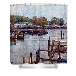 Olcott Shower Curtain by Tammy Espino
