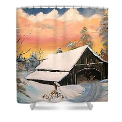 Shower Curtain featuring the painting Old Barn Guardian by Sharon Duguay