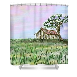 Old Barn Shower Curtain by Stacy C Bottoms