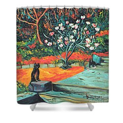 Old Bear Cat And Blooming Magnolia Tree Shower Curtain