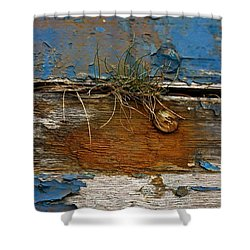 Old Boat - Peeling Paint Shower Curtain