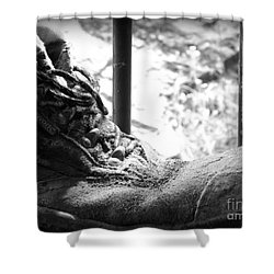 Old Boots Shower Curtain by Clare Bevan