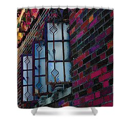 Old Brick Renewed Shower Curtain