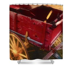 Old Buck Shower Curtain by Stephen Anderson