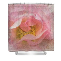 Old English Rose Shower Curtain