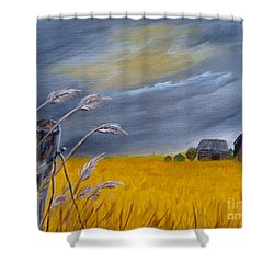 Old Farm 1 Shower Curtain by Beverly Livingstone