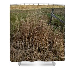Old Fence Line Shower Curtain by Donald S Hall