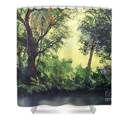 Old Florida 2 Shower Curtain