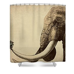 Old Friend Shower Curtain