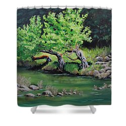 Shower Curtain featuring the painting Old Friends by Karen Ilari