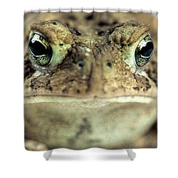 Old Gold Eyes Shower Curtain