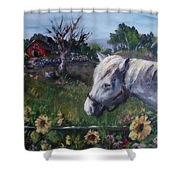 Shower Curtain featuring the painting Old Grey Mare by Megan Walsh