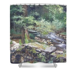 Shower Curtain featuring the painting Old Mill Steam II by Lori Brackett