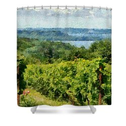 Old Mission Peninsula Vineyard Shower Curtain by Michelle Calkins
