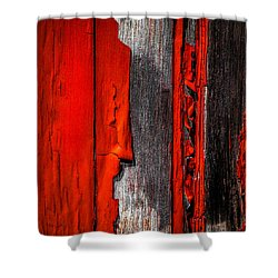 Old Red Barn One Shower Curtain by Bob Orsillo