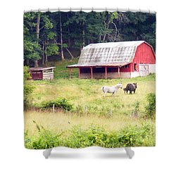 Old Red Barn West Of Brevard Nc Shower Curtain
