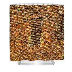 Old Roswell Manufacturing Mill Shower Curtain