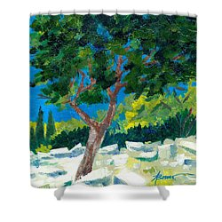 Old Ruins At Rhodes Shower Curtain