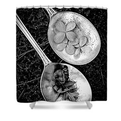 Old Silver Spoons Shower Curtain by Edward Fielding