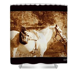 Old Spain Shower Curtain by Clare Bevan