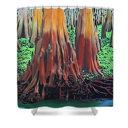 Old Swampy Shower Curtain