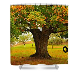 Old Tire Swing Shower Curtain by Terri Gostola