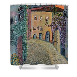 Shower Curtain featuring the painting Old Town In Piedmont by Felicia Tica