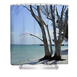 Shower Curtain featuring the photograph Old Tree by Laurie Perry