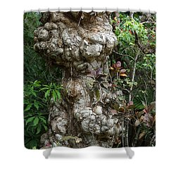 Shower Curtain featuring the mixed media Old Tree by Rafael Salazar