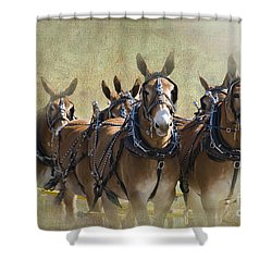 Old West Mule Train Shower Curtain