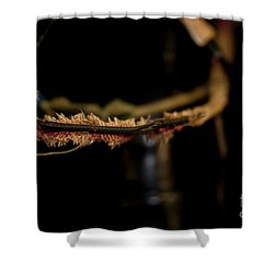 Old Wires 1948 Harley Davidson Shower Curtain