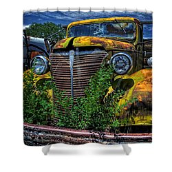Shower Curtain featuring the photograph Old Yeller by Ken Smith