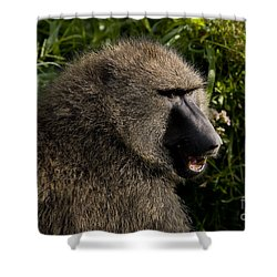 Olive Baboon   #0685 Shower Curtain