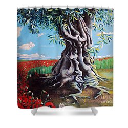 Olive Tree In A Sea Of Poppies Shower Curtain by Alessandra Andrisani