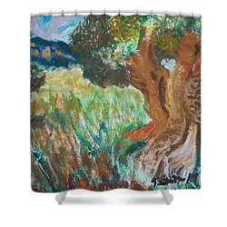 Shower Curtain featuring the painting Olive Trees by Teresa White