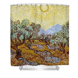 Olive Trees Shower Curtain by Vincent Van Gogh