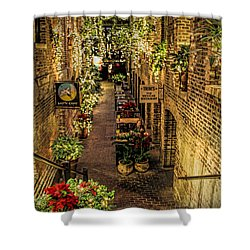 Omaha's Old Market Passageway Shower Curtain