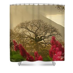 Shower Curtain featuring the photograph Ometepe Island 2 by Rudi Prott