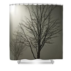 On A Foggy Night Shower Curtain