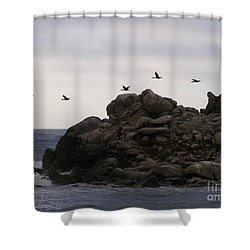 On A Mission Shower Curtain by Bev Conover