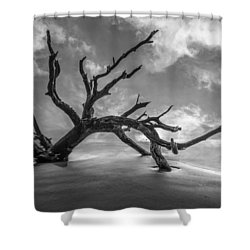 On A Misty Morning In Black And White Shower Curtain by Debra and Dave Vanderlaan
