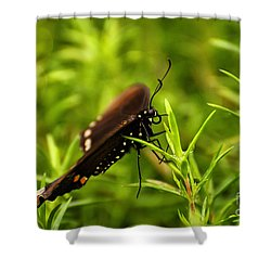 On A Rainy Day Shower Curtain by Lois Bryan