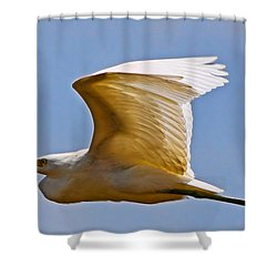 On Angel's Wings Shower Curtain by Gary Holmes