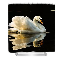 Shower Curtain featuring the photograph On Calm Water by Rose-Maries Pictures