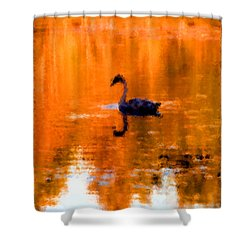 On Golden Pond Shower Curtain by Jack Gannon