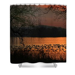 On Golden Pond Shower Curtain by Lori Deiter