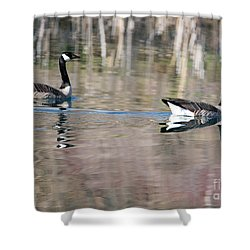 On Golden Pond Shower Curtain by Mike Dawson