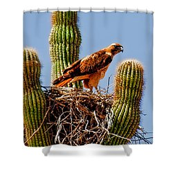 On Guard Shower Curtain by Robert Bales